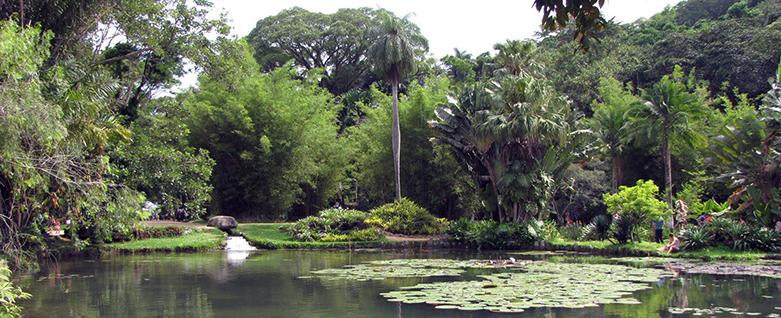 Fábio Caramuru EcoMúsica Jardim Botânico do Rio de Janeiro