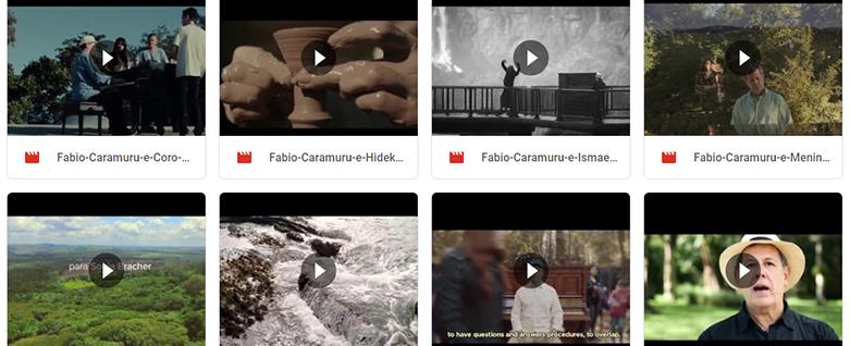 Download vídeos com Fábio Caramuru – Google Drive